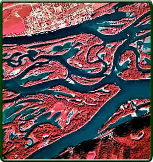 False- Color Infrared Image of the Mississippi River Near Harper's Ferry, Iowa  -Showing the complex mosaic of aquatic and terrestrial habitats that are typical of the Upper Mississippi River system.