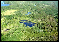 A landscape matrix of interconnected wetlands and uplands in northern Minnesota. Courtesy of the U.S. Geological Survey.